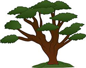 New-Jersey-Tree-Service_Experts-Sidebar